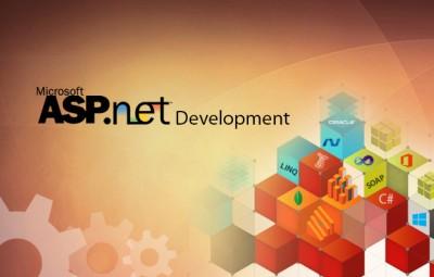 Asp.Net web development